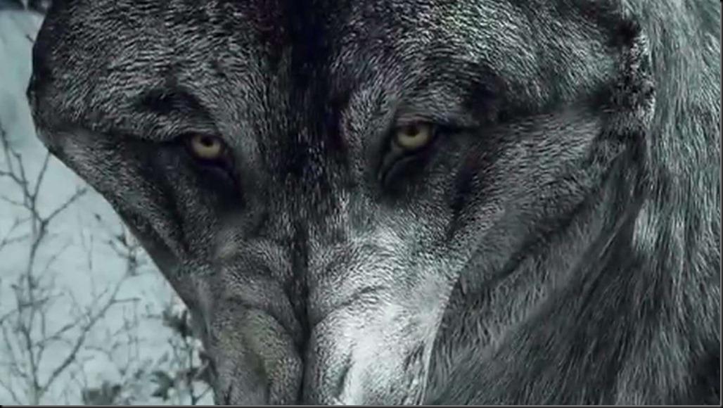 2401348-wolf dlc[1]